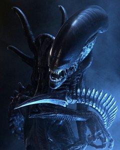 Aliens critter